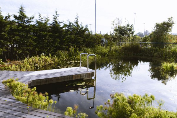 Hotel_Verde_eco_pool_smaller
