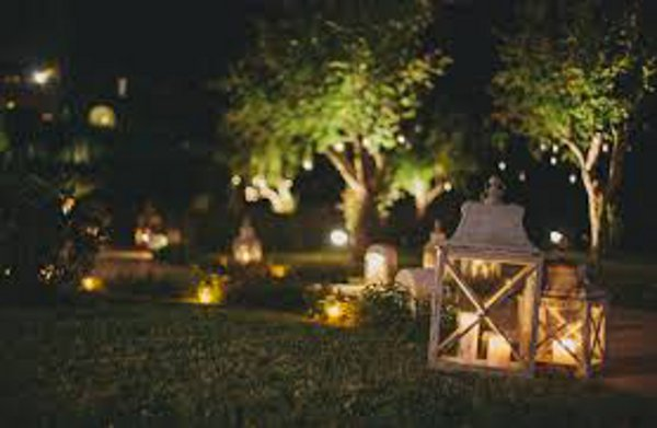 Energy efficient ways to light up your garden eproperty news for Iluminar arboles jardin